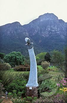 South Africa Cape Town Botanical Garden Kirstenbosch
