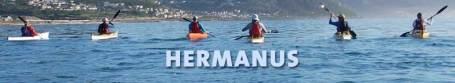 Kayakers on Walker Bay