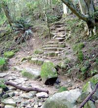 Hiking Pathway