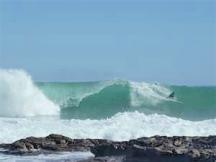 Scarborough Surfer