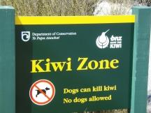 Kiwi Zone