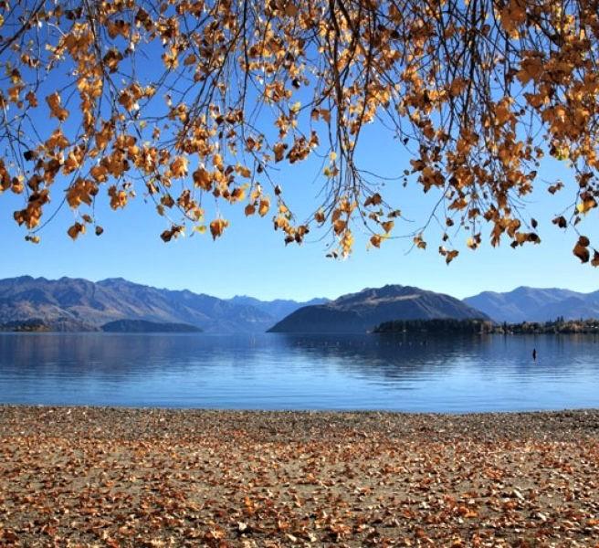 Lake Wanaka Lakeshore - Discover the World