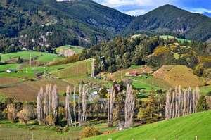 Motueka Valley