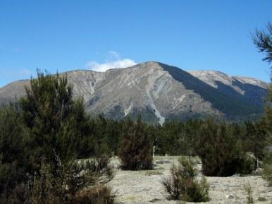 Mt. Robert