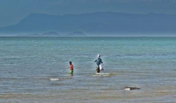 Fishing Close to Shore