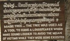 Magic Banyan Tree