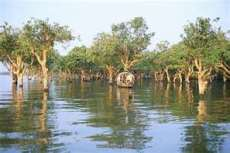 Tonlé Sap Lake