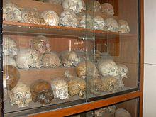 Skulls at Memorial Stupa