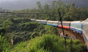 Jungle Route