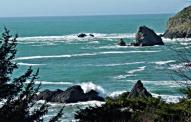 Gold Coast Cove