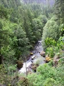 Brice Creek