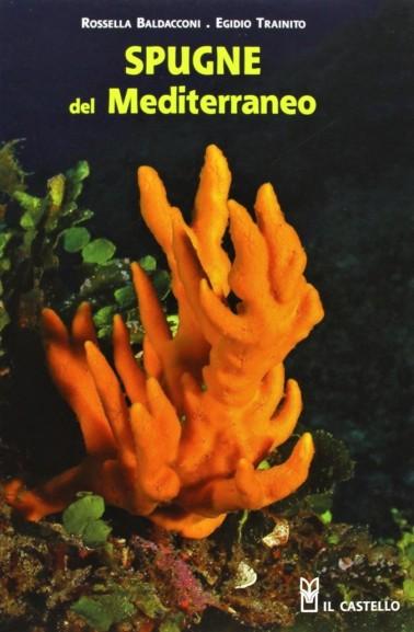 Sponges of the Mediterranean - NHBS.com
