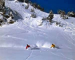 Graceful Powder Skiers