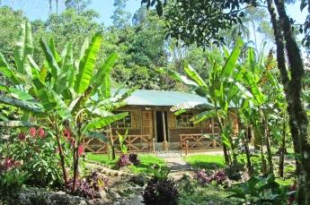 My Accommodation Pakay Tours