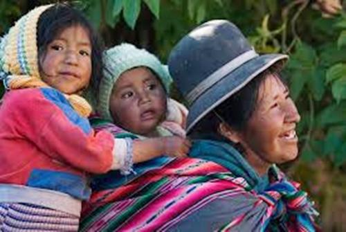 Aymara Family