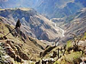 Colca Canyon Peru