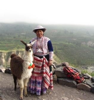 Chivay Woman with Llama