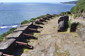 Cannons Corral Fort