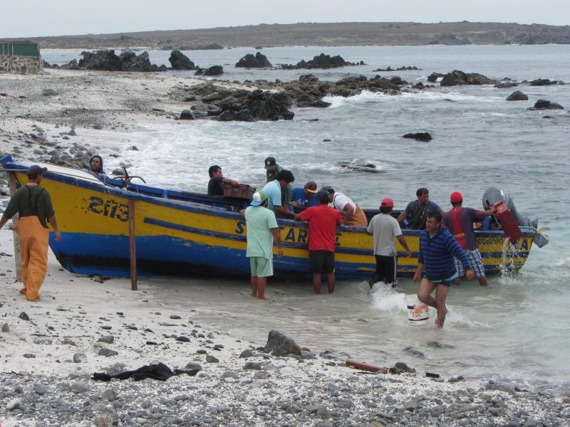 Punta de Chotos Fisherman