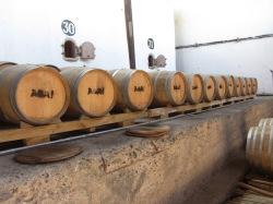Pisco Distillery