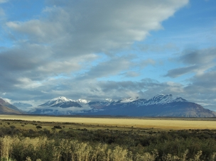 Argentinian Steppe