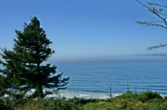 Coastal Vista