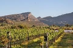 Cederberg Mountains South Africa