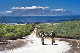 View from Robben Island