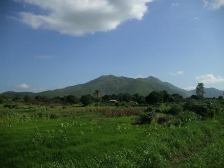African Vista