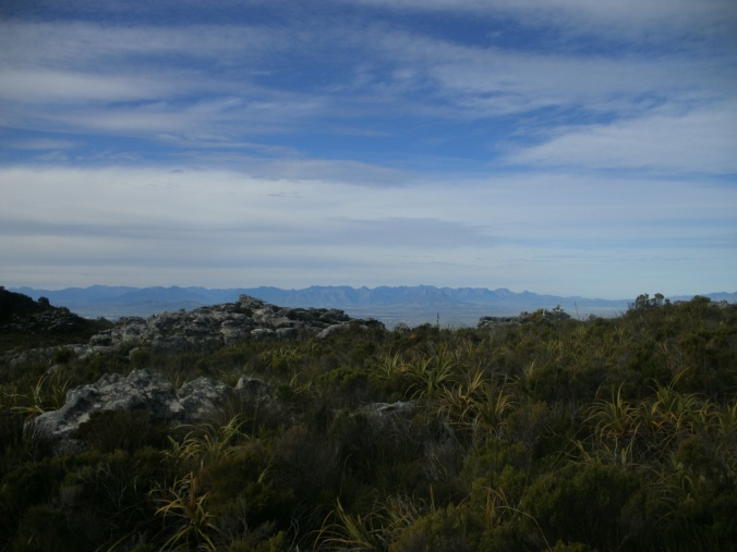 Table Mountain Vista