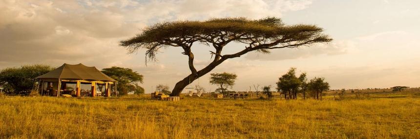 Tanzania Bushland - Zegrahm Expeditions