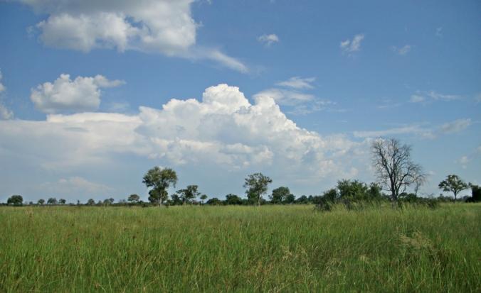 Botswana Sky