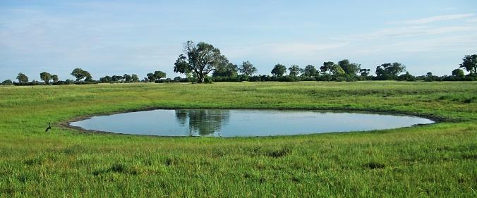 Delta Pond