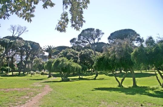 Van Riebeck Park