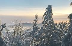 Spencer Butte Early Morning