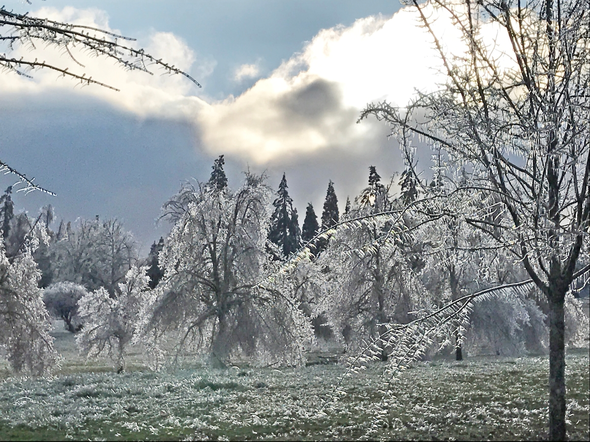 Oregon Ice Storm