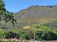 Elgin Landscape