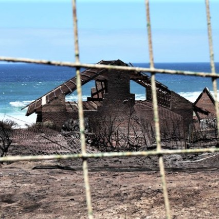Betty's Bay Fire 2019 - timeslive.co.za