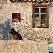 Chloe Akrithakis Mapping the History - zoumboulakis.gr
